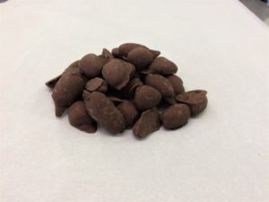 Chocolate Covered Pecans 2